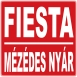 Fiesta - Mézédes Nyár (Single)