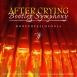 After Crying - Bootleg Symphony