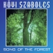 Kövi Szabolcs - Song Of The Forest