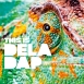 Deladap - This Is Deladap
