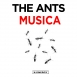 The Ants - Musica (Single)