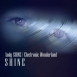 Andy Shine / Electronic Wonderland - Shine (EP)