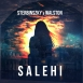 Sterbinszky - Salehi (Feat. Walston) (Maxi Single)