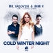 Mr. Vasovski  - Cold Winter Night (Feat. Immi V & Cserpes Laura)
