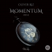 Oliver Riz - Momentum (Single)