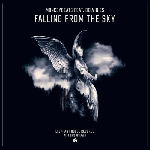 MonkeyBeats - Falling From The Sky (Feat. Delvin.es)	(Single)