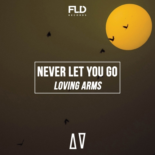 Loving Arms  - Never Let You Go (Maxi Single)